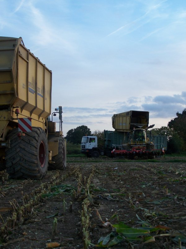 Ensilage de maïs 2010 !
