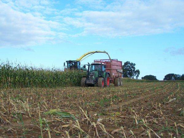 Ensilage de maïs 2010 .!  Mon autre blog : miniaturecuma35