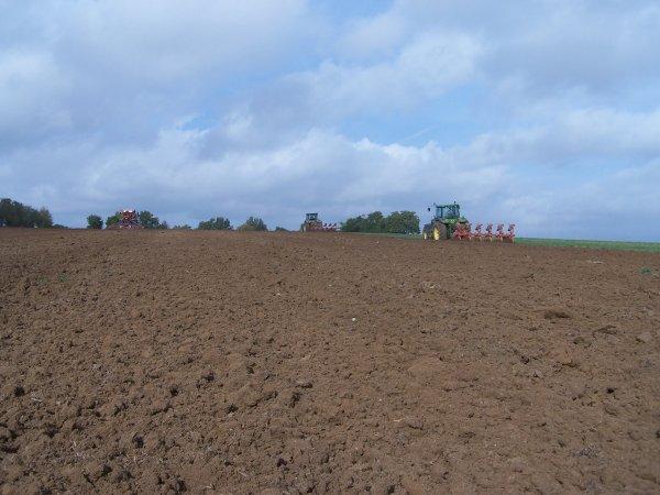 Labour & semi de blé 2010.