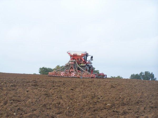 Labour et semis de blé 2010.