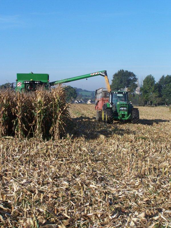 Moisson maïs 2011