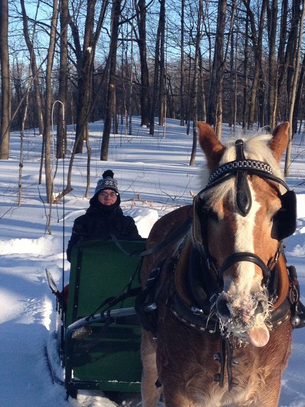 « S'il arrive que mon cheval et moi tombons, relever-le avant moi ♥ »