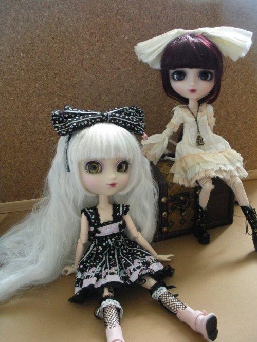 Quelques photos, juste comme ça : Suzu et Ambre