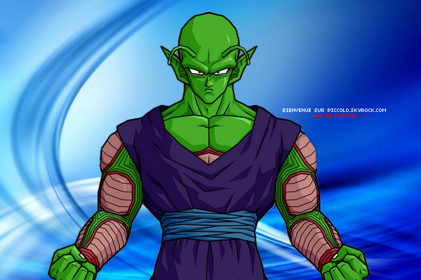 Source n°4 : Piccolo