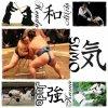 ----------------- . 日本 . ------------------------------------------------------------  ➠ • Sports Traditionnels •