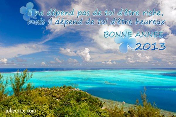 LE BIRDIE CLUB  SOUHAITE UNE BONNE ANNEE UNE BONNE SANTE  2013 A TOUS