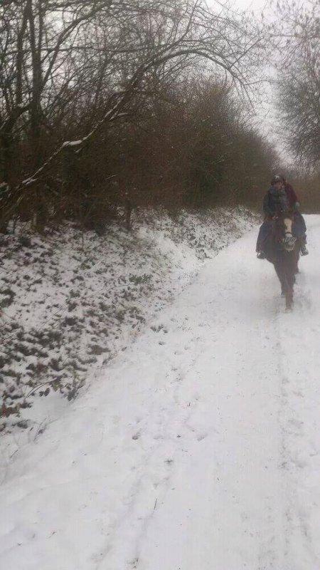 Balade a dada dans la neige :D