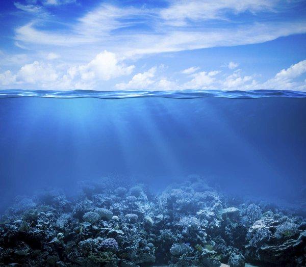 Naquit l'océan de tes yeux...