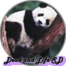 Photo de Dead-and-Life-SD
