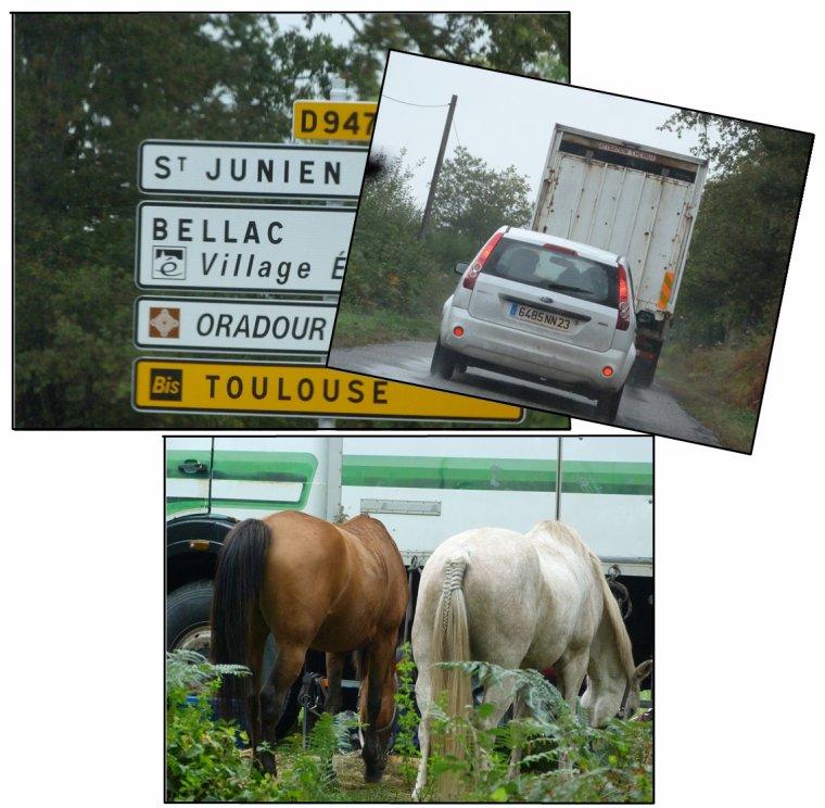 CCE Bellac domaine de Gauchoux ♥