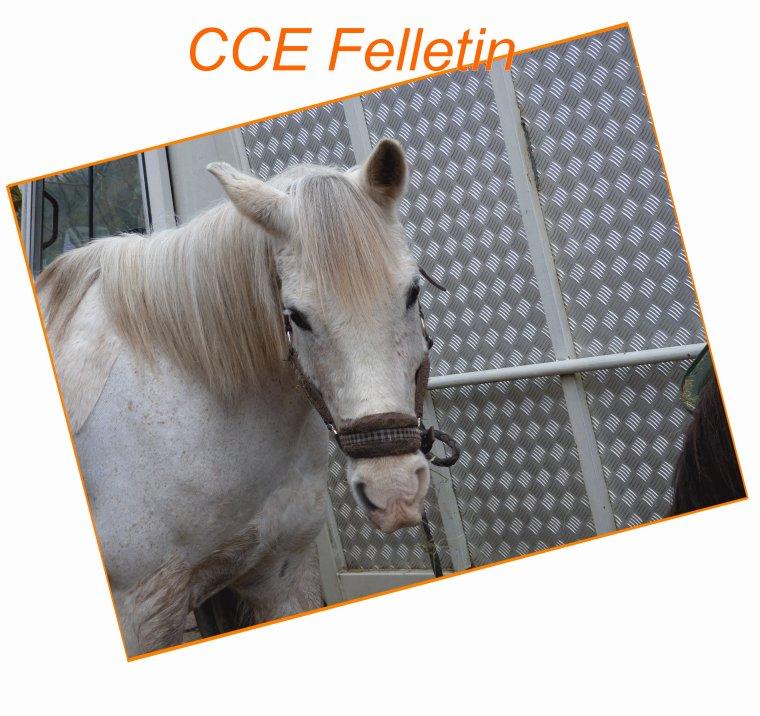 CCE Felletin ♥