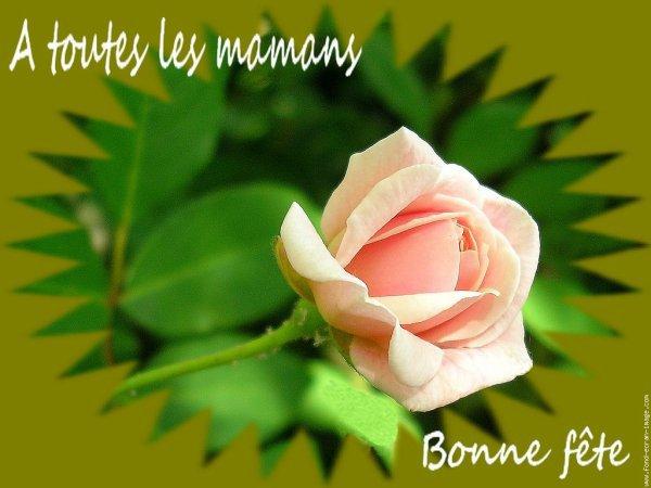 pour la maman de ma belle soeur vivi et pour la maman  une  amie  je souhait une bonne fêtes a vos maman