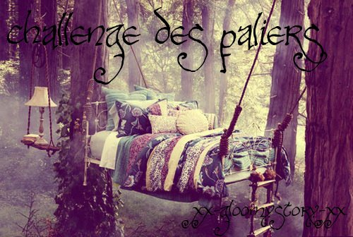 ~  Challenge des Paliers