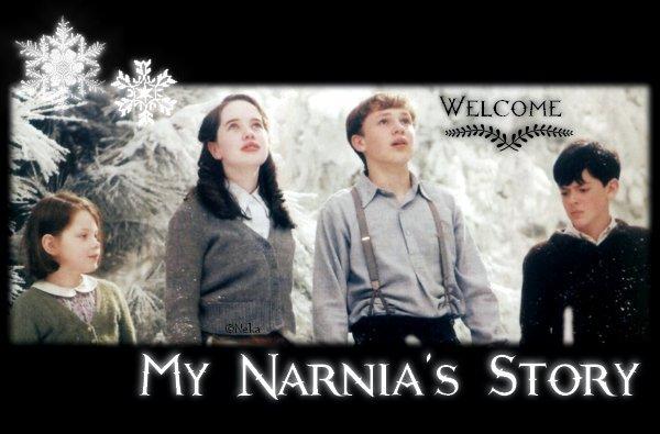 My Narnia's Story