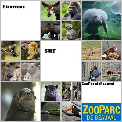 Bienvenue dans l'univers du ZooParc de Beauval   ... ♥☮
