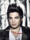 Photo de Adam-Lambert-Musique
