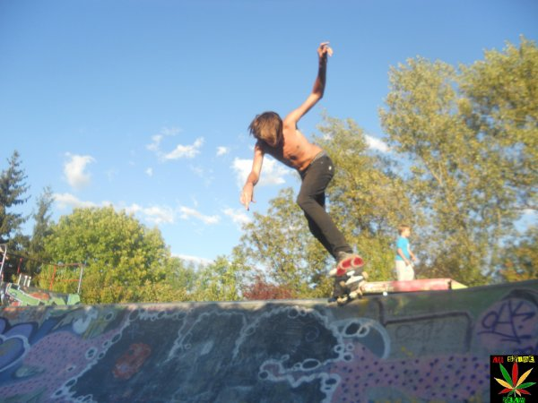 .Back tail
