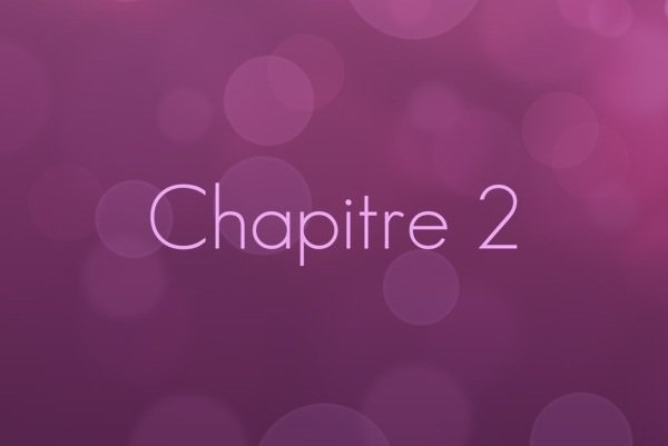 Chapitre 2