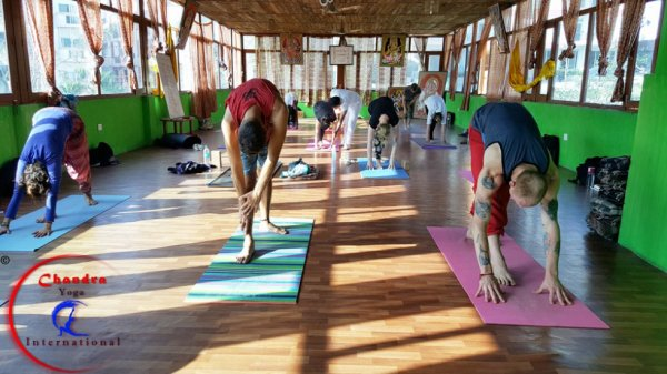 Effects of Yoga on Health and Stress.