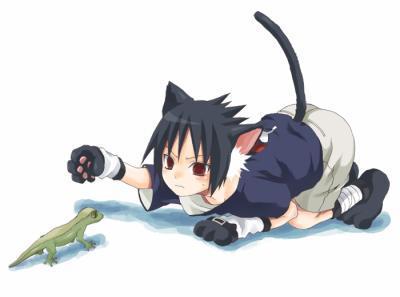 Sasuke en neko