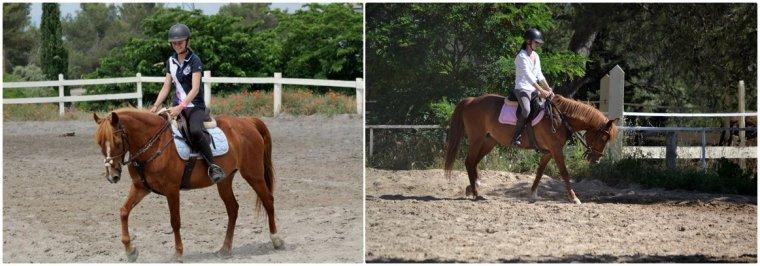 """""""On choisit ce sport parce qu'on l'aime, mais on le choisit aussi parce qu'on aime les animaux. Quand ils meurent ce n'est pas comme briser un bâton de hockey ou une raquette de tennis. Il a changé ma carrière et il représentait tout pour moi. Beaucoup de gens disent que quand tu as un rapport très fort avec un cheval, tu deviens un peu comme lui ou que le cheval devient un peu comme toi. On avait un peu la même personnalité. On était deux gagnants, on avait la même énergie, qui se transformait en choses incroyables. En tout cas maintenant si on me demande pourquoi je l'aimais je répondrais tout simplement : Parce que c'était lui, parce que c'était moi, parce que c'était nous"""" Eric Lamaze ♥"""