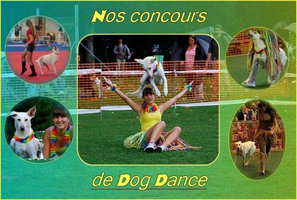 Nos concours de dog dance
