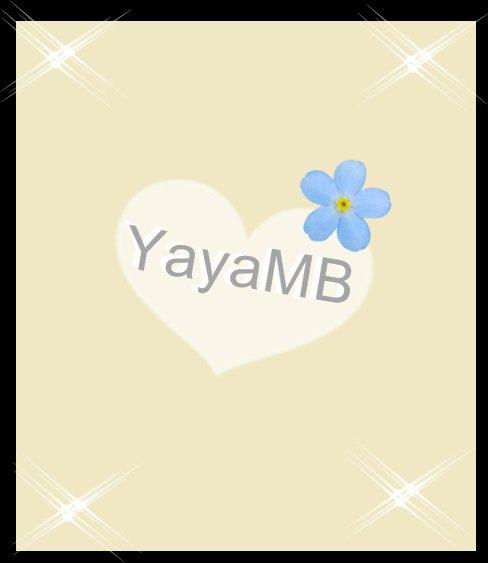 Blog de YayaMB