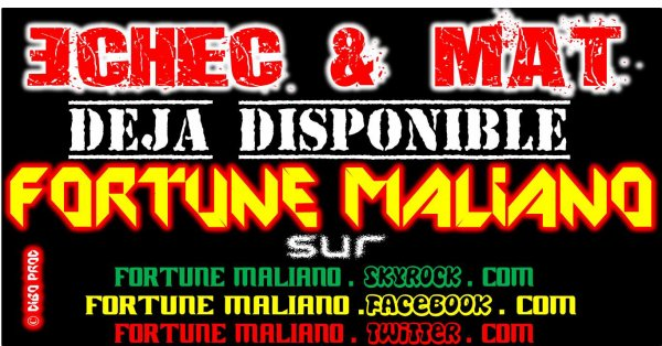 N°1 du Mali Rap / Echec & Mat (2013)