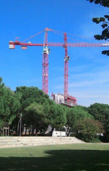 PI & the Cranes