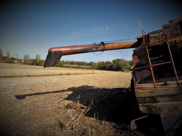 PHOTOS PERSO: Léviathan des terres
