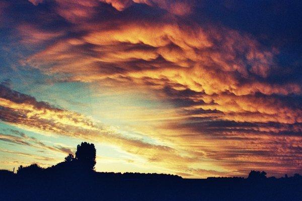 PHOTOS PERSO: Vu du Velux