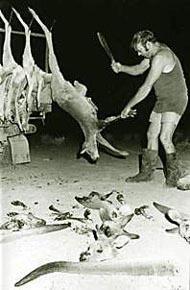 ADIDAS impliqué dans un des plus grands massacre !!!