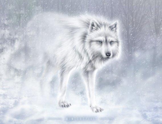 Les paroles des loup
