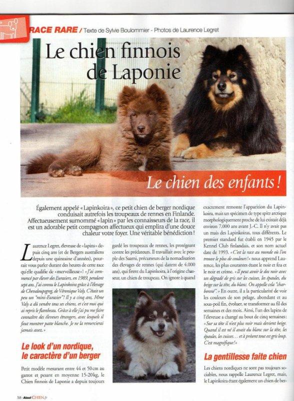 """Article sur le Lapinkoïra dans """"Atout Chien"""" !"""