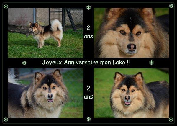 Bon Anniversaire Lako !!!