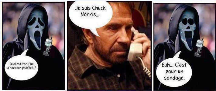 scream vs chuck norris