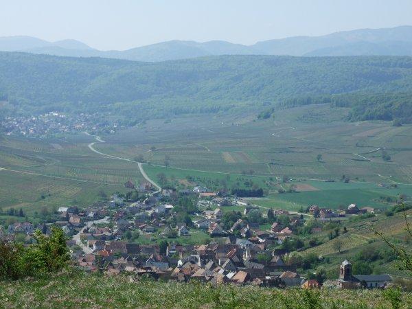 Marche populaire: Westhalten