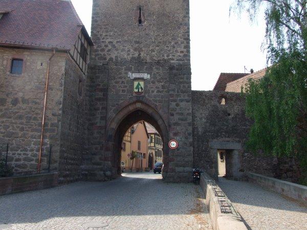 La route des vins ( les photos).