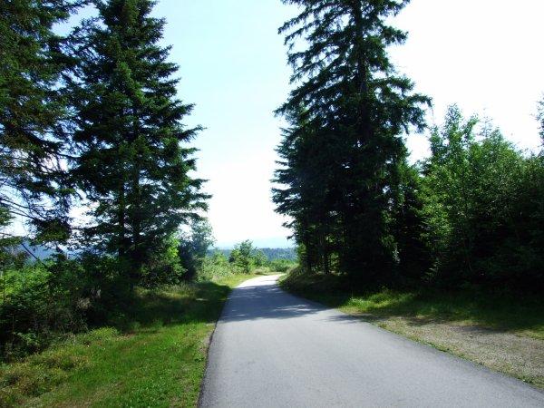 Direction le sud (les photos).