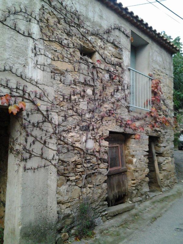 Randonnée - L'Ayrolle