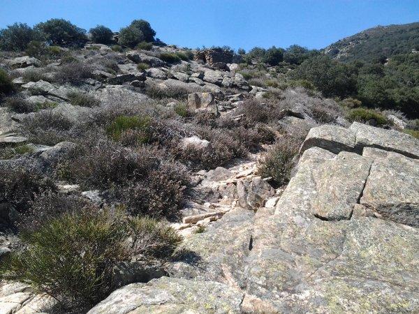Randonnée - Les Banissous