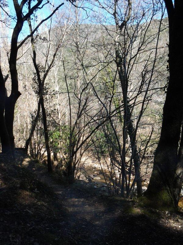 Randonnée - Arboretum de l'Espaze