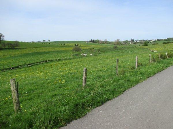 Voyage à vélo - la voie du Nord ( les photos).