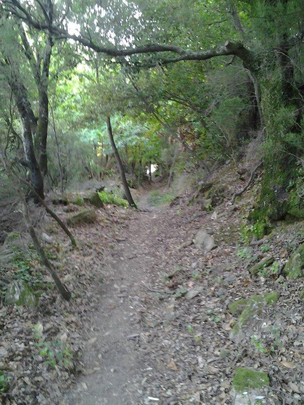 Randonnée - La croix des Baussels