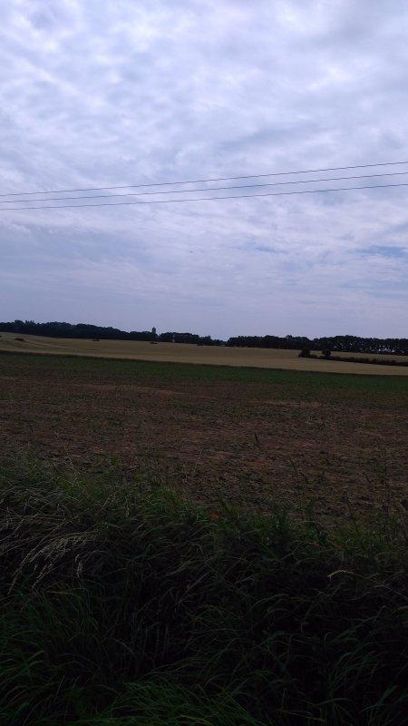 Randonnée - Sentier de la voie verte