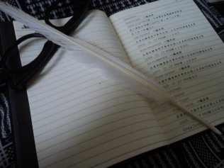 voila mon cahier Death-note
