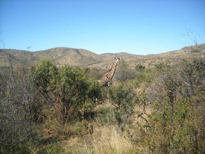 Visite d'une Reserve naturelle