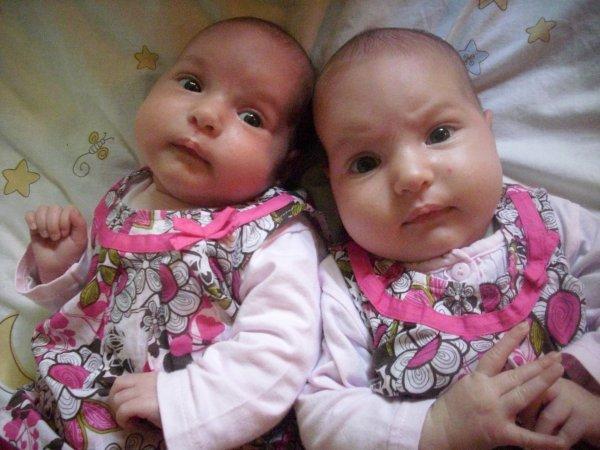 les jumelle