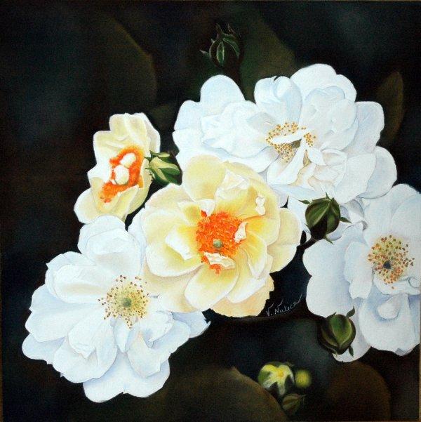 Les Roses Seagull