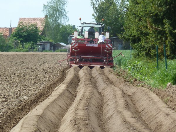 Plantations patates 2012 avec un deutz